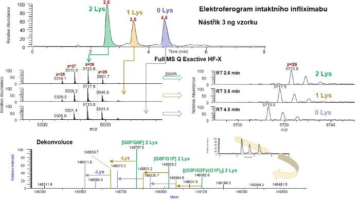 Obr. 4: Elektroferogram intaktního infliximabu – biologického léčiva autoimunitního onemocnění - s identifikovanými glykoformami pomocí Q Exactive Plus Biopharma