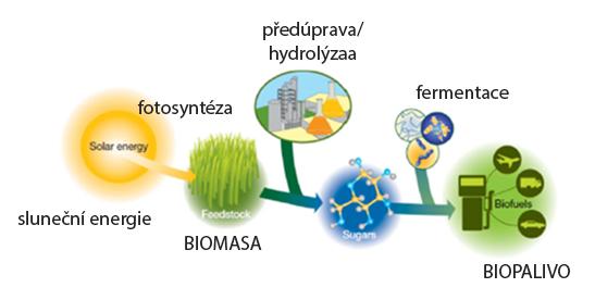 Použití techniky dynamické sorpce par: Produkce biopaliv – Schéma vývoje