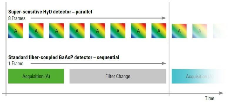 HyVolution_Multiple-Colors_Graph.jpg