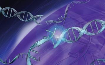 Obr. 2: prehled-biolc-kolon-thermo-scientific_bio2
