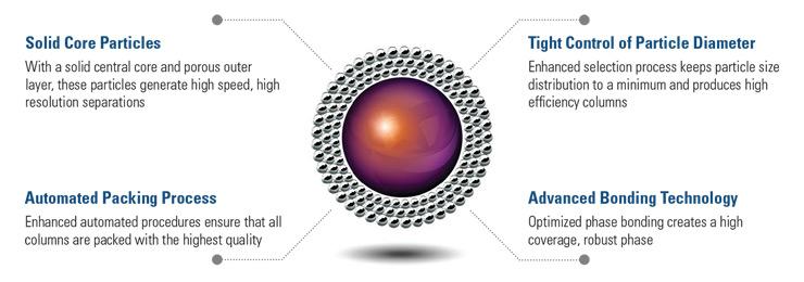 Accucore solid core