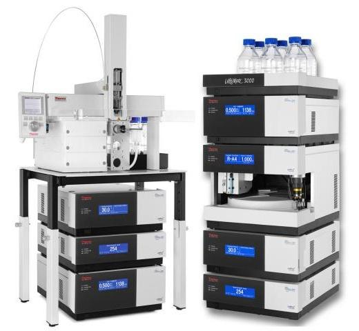 Chromatografie: HPLC sestava UltiMate 3000 - XRS