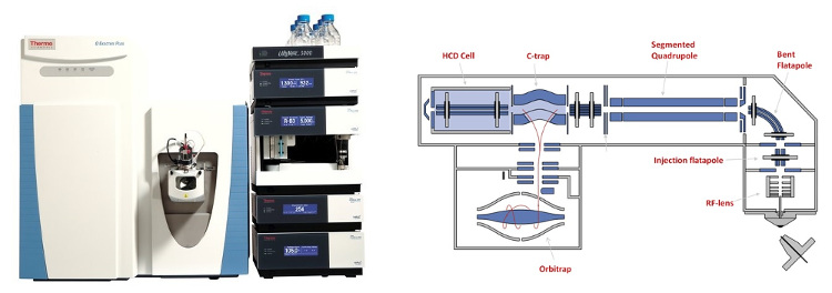 Obr. 1: Thermo Scientific™ Q Exactive™ Hybrid Quadrupole-Orbitrap™  v spojení s vysokoúčinnou kvapalinovou chromatografiou (HPLC, Ultimate™ 3000 RS UHPLC)