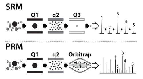 Grafické znázornění SRM a PRM módu v kvadrupólu a Orbitrapu