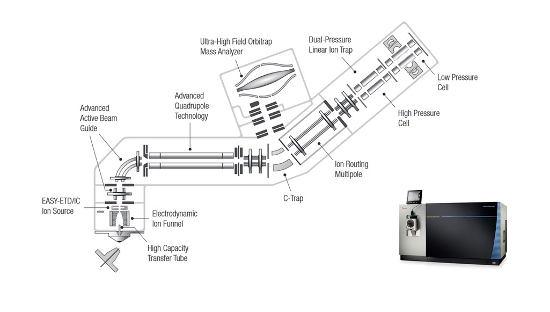 Obr. 1 - Thermo Scientific™ Orbitrap Fusion™ Lumos™ Tribrid™ hybridný hmotnostný spektrometer