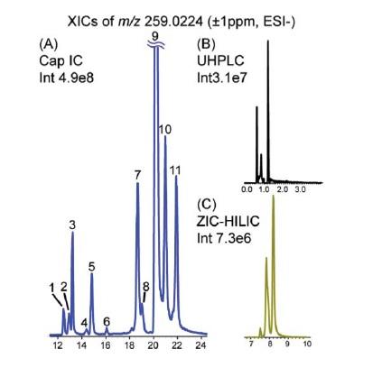 Obr. 4: Separace 11 isomerních forem cukerných mono fosfátů (m/z=259.0224) za použití HPIC (A), RP-UHPLC (B) a HILIC (C).