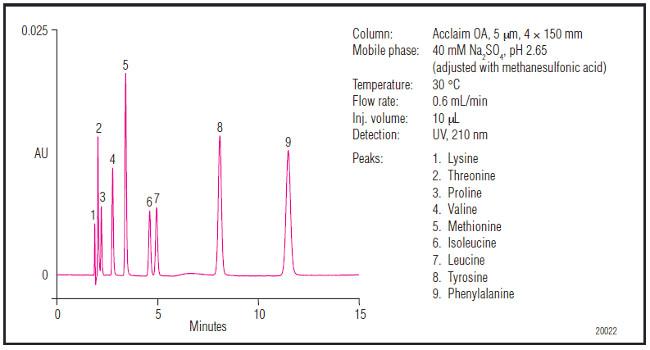 Obr. 7: Separácia aminokyselín na kolóne Accalim Organic Acid