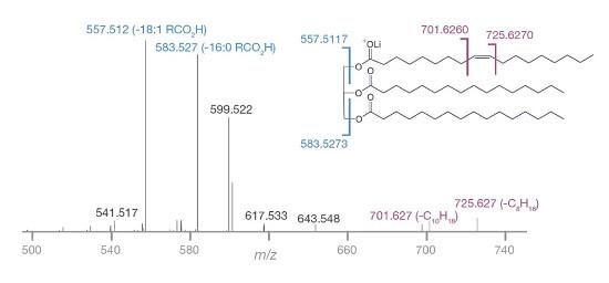 Obr. 3: HRAMS-UVPD-MSn fragmentační spektrum triacylglycerolu (TAG) s vyznačenými diagnostickými iontu pro polohu dvojných vazeb.
