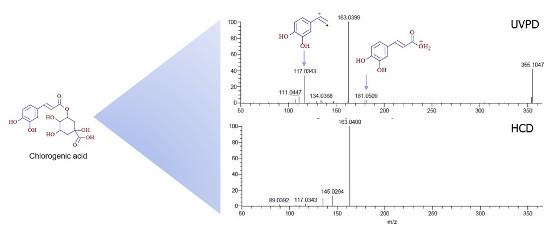 Obr. 4: Porovnání HRAM-UVPD/HCD-MSn spekter kyseliny chlorogenové. Viditelné jsou specifické fragmenty poskytující pouze UVPD fragmentace.