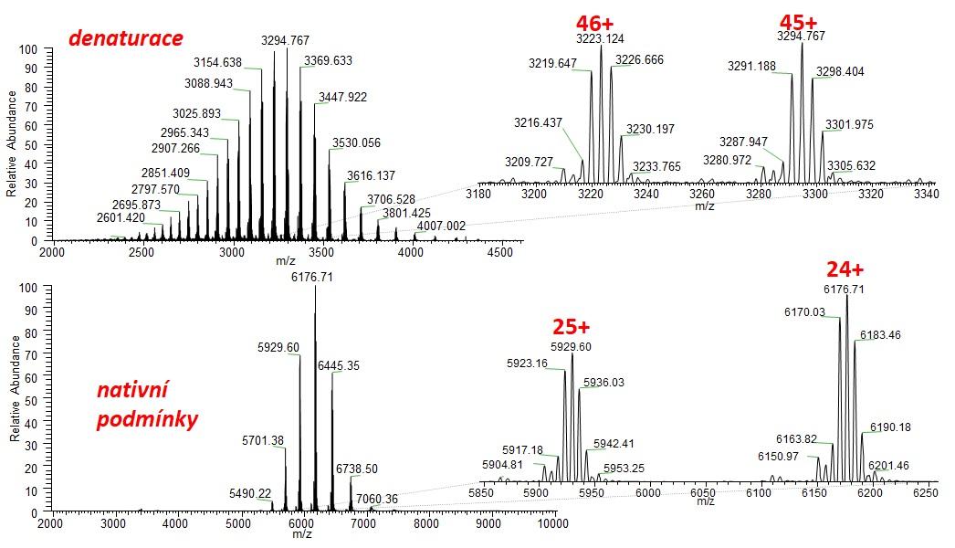 Hmotnostné spektrum adalimumabu, ESI