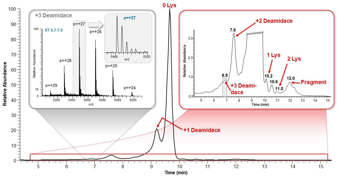Chromatografická separácia adalimumabu na iónomeniči, odhaľujúca prítomnosť nábojových variantov