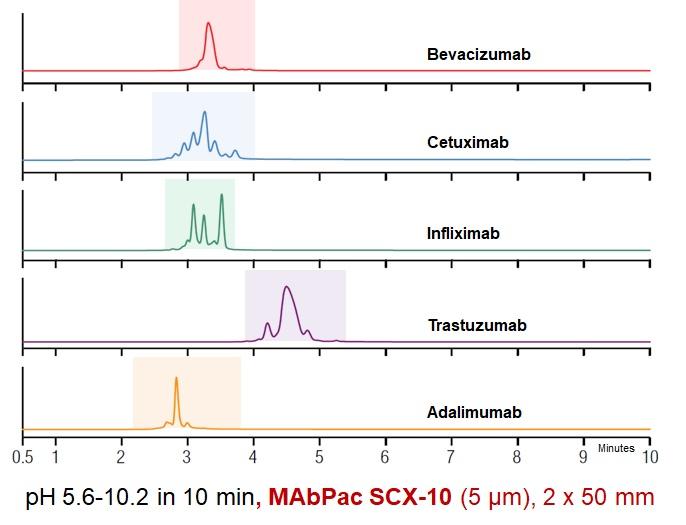 Profily jednotlivých finálnych foriem komerčne dostupných biofarmák z pohľadu   prítomnosti nábojových variantov z procesu posttranslačnej modifikácie